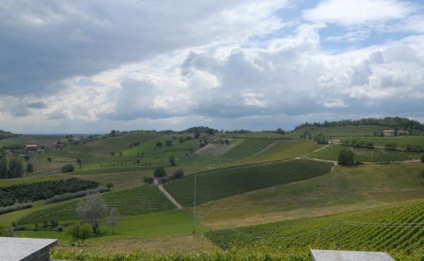 Casa-panoramica-Monforte-d\\\'Alba-(16)