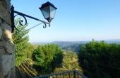 azienda vitivinicola (39)