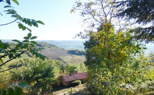 cascina in langa (4)