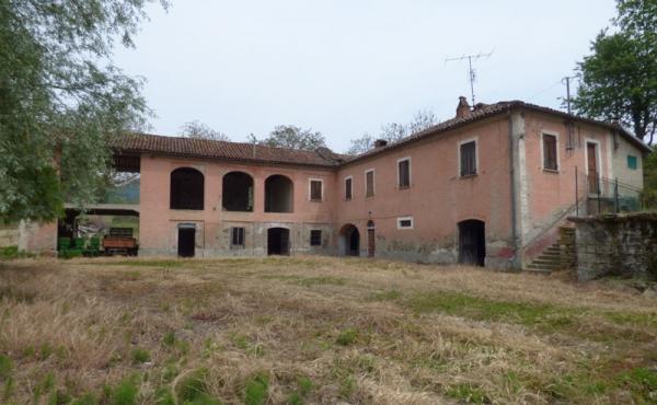 cascina nel monferrato (2)