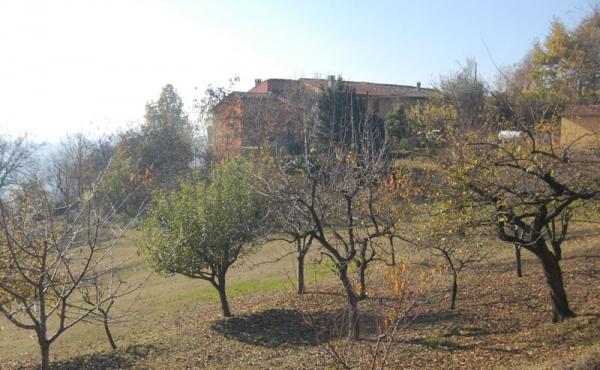 cascina in vendita monferrato (15)