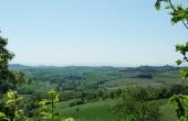 cascina in vendita monferrato (2)