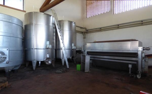 azienda vitivinicola vendita alba (17)