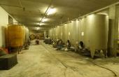 azienda vitivinicola vendita alba (20)