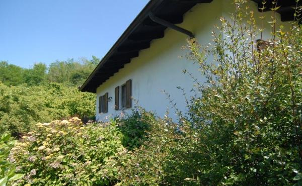 Villa con giardino (13)