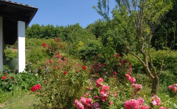 Villa con giardino (19)