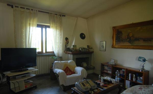 Villa con giardino (37)