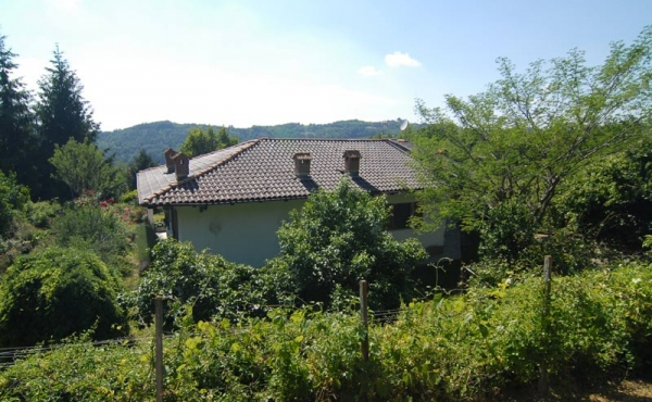 Villa con giardino (5)