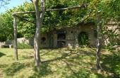 Villa con giardino (10)