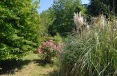 Villa con giardino (18)