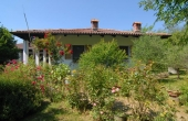 Villa con giardino (21)
