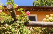 casa-vendita-monferrato-(27)