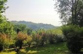 casa-vendita-monferrato-(5)
