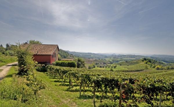 villa vendita monferrato (1)
