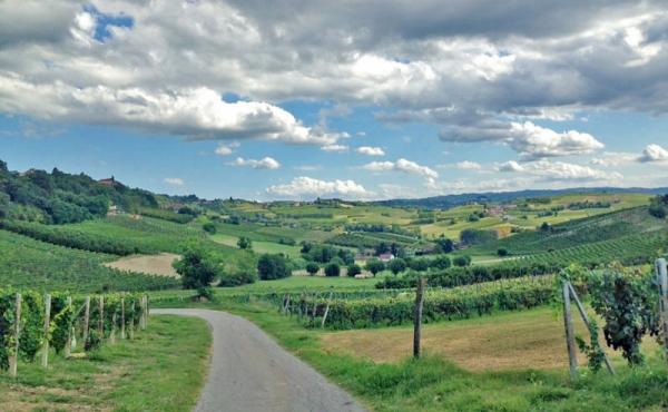 villa vendita monferrato (8)
