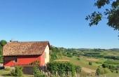 villa vendita monferrato (3)