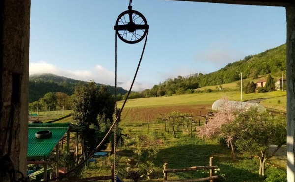 azienda agricola vendita monferrato (55)