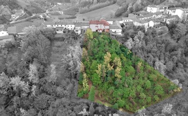 casa-vendita-monferrato23
